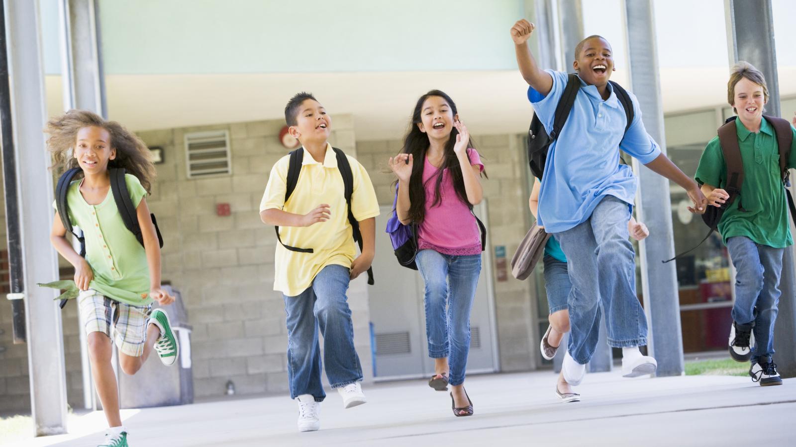 Student enrolment management system